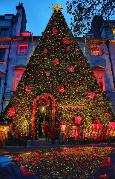Christmas Tree Outside.Jigsaw Puzzle 400 Pieces Of Giant Christmas Tree Outside Annabel S Berkeley Square London