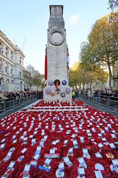 Poppies And Wreathed On Remembrance Day At The Cenotaph
