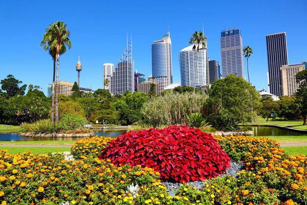 Sydney city skyline and cbd and the royal botanic gardens sydney sydney city skyline and cbd and the royal botanic gardens sydney new south wales altavistaventures Image collections