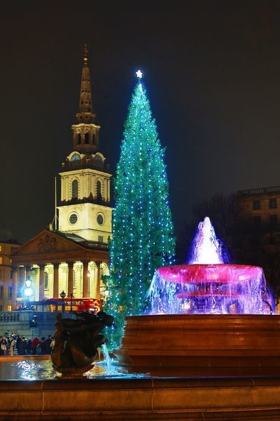 Trafalgar Square Christmas Tree and fountain, Trafalgar Square, London
