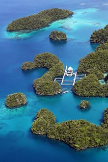 Aerial view of islands and Dolpjins of the Pacific, Republic of Palau, Micronesia