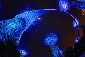 Blue lights of the futuristic Supertrees in the Supertree Grove at the Gardens by