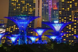 Blue Supertree Grove,Gardens by the Bay, Singapore, Republic