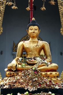 Buddha statue at Wat Phra Singh Temple in Chiang Mai, Thailand