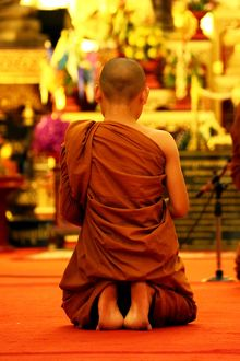 Buddhist monks praying at Wat Chedi Luang in Chiang Mai, Thailand