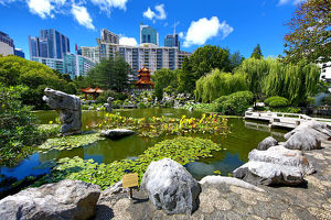 Chinese Garden of Friendship, Darling Harbour, Sydney, New South Wales, Australia
