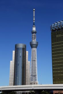 City skyline of Sumeda with the Tokyo Skytree Tower, Tokyo, Japan