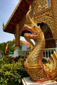 Gold Naga statue at Wat Phra Singh Temple in Chiang Mai, Thailand