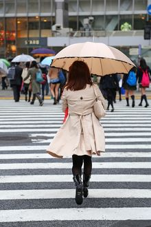 Japanese woman crossing the street with umbrella in the rain on a pedestrian crossing in Shibuya