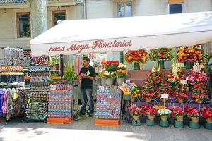 La Rambla Flower stall in the Ramblas, Barcelona, Spain