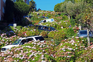 Lombard Street, the crookedest street in the workd in San Franciso, California, USA