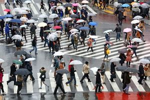People carrying umbrellas in the rain walking across the pedestrian crossing in Shibuya