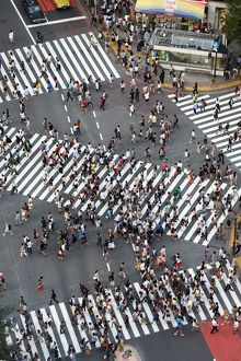 People crossing the pedestrian crossing at the intersection in Shibuya, Tokyo, Japan