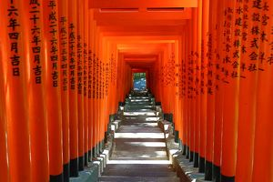 Red Torii Gate tunnel at the Hie-Jinja Shinto Shrine, Tokyo, Japan