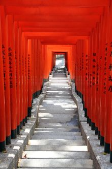 Red Torii gates and steps to the entrance to the Hie-Jinja Shinto Shrine in Tokyo, Japan