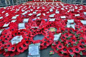 <b>Remembrance Day</b><br>Selection of 26 items