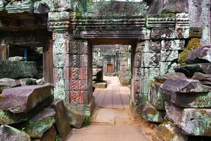 Ruins at Ta Prohm Temple, Angkor, Siem Reap, Cambodia
