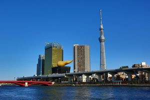 Skyline of the buildings in Sumida including the Tokyo Skytree as seen from the Sumida