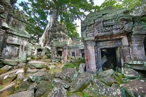 Spung tree roots covering ruins at Ta Prohm Temple, Angkor, Siem Reap, Cambodia