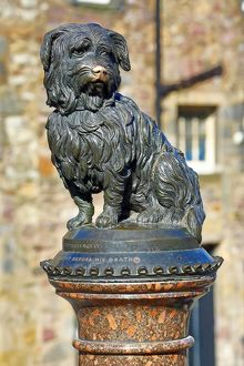 Statue of the loyal Skye Terrier dog Greyfriars Bobby in Edinburgh, Scotland, United