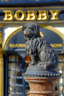 Statue of the loyal Skye Terrier dog Greyfriars Bobby and pub of the same name in