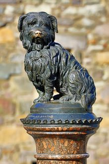 Statue of Skye Terrier dog Greyfriars Bobby, Edinburgh, Scotland