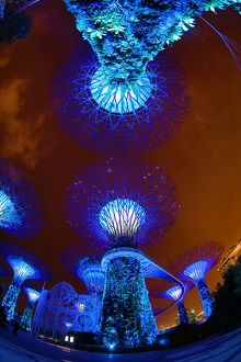 Supertrees in the Supertrees Grove in the Gardens by the Bay, Singapore, Republic