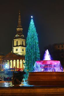 Trafalgar Square Christmas Tree, fountain and reflection, London