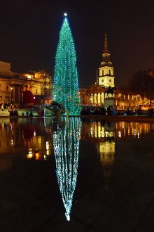 Trafalgar Square Christmas Tree and reflection, Trafalgar Square, London
