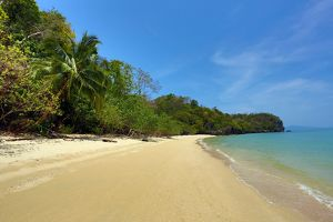Tropical sandy beach in the Kilim Geoforest Park, Langkawi, Malaysia