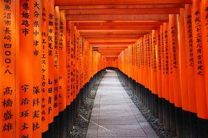 Tunnels of red Torii gates, Fushimi Inari shrine, Kyoto, Japan