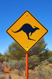 yellow kangaroo wildife warning sign in australia